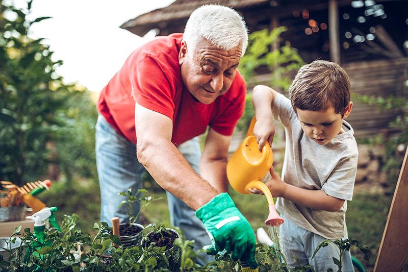 gardening grandad and grandson