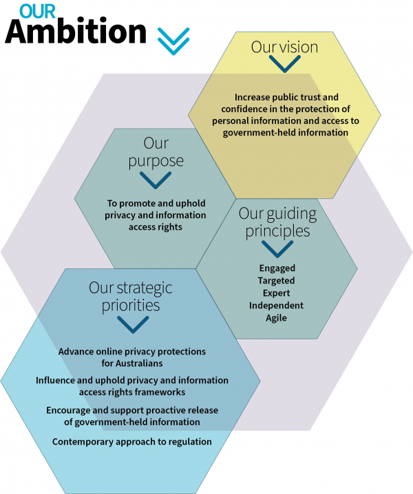 OAIC ambition graphic 2020